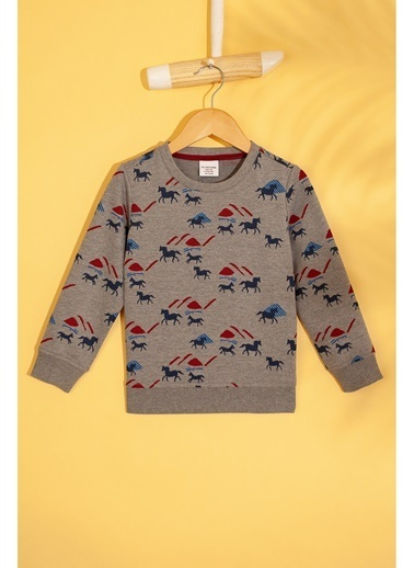U.S. Polo Assn. U.S. Polo Assn. Desenli Gri Melanj  Sweatshirt Gri